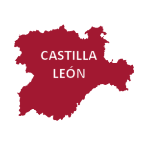Castilla y León aplica cláusulas sociales al 75% de la contratación pública