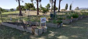 El Ayuntamiento de Pontevedra contrata una empresa de inserción laboral para la construcción de huertos urbanos.